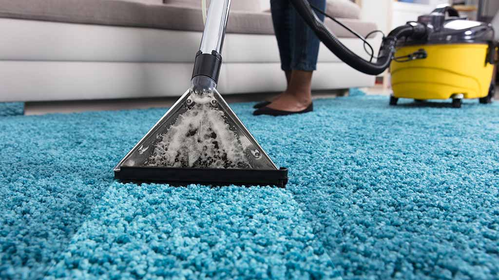 11 Carpet Cleaning Ideas in a Small Budget