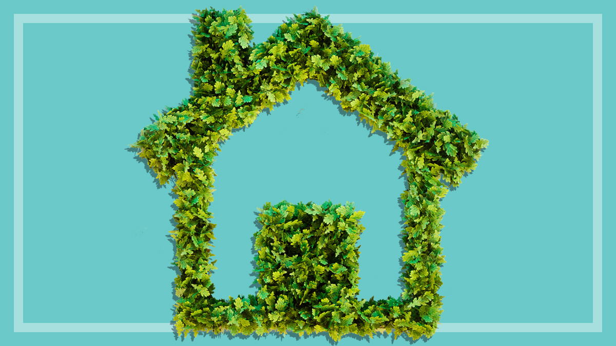 Five ways to reduce your household's energy use - Energy